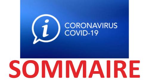 coronavirus_sommaire.png