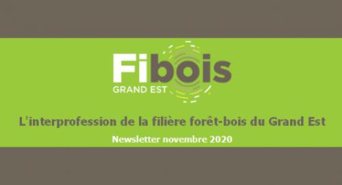 fibois_nov_2020.png